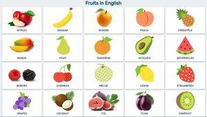từ vựng tiếng Anh lớp 1 chủ đề hoa quả
