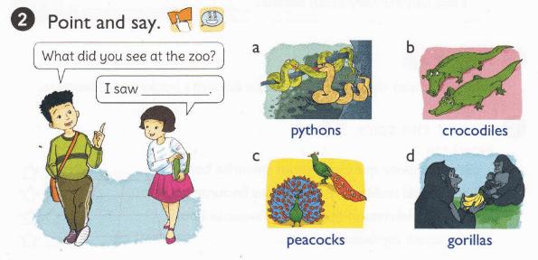 tiếng Anh lớp 5 tập 1 unit 9